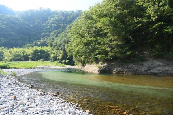 なかなかきれいな和知野川