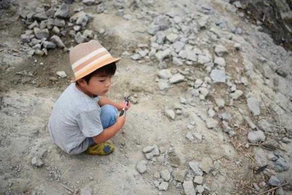 化石研究員A
