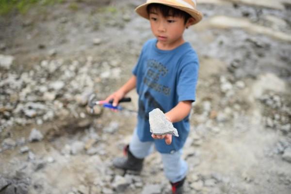 化石研究員B