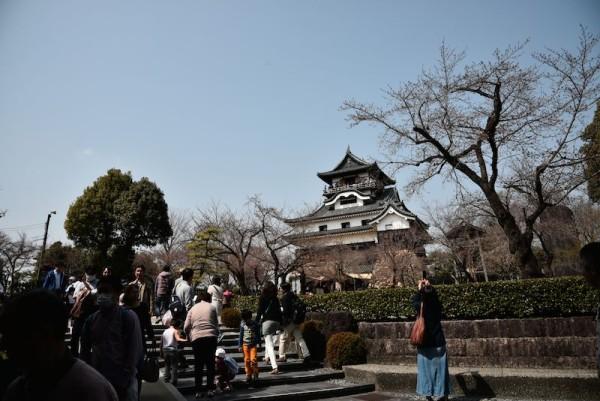 こちらが犬山城です