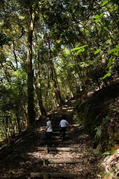 山道を登っていくとあります
