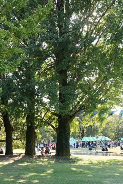 木陰がきもちいい気温でした