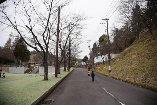 この道路は封鎖されてて常時歩行者天国です