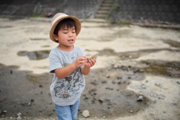 化石のうんちくを語る化石研究員A
