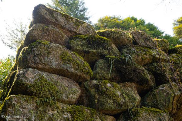 小里城跡 石垣